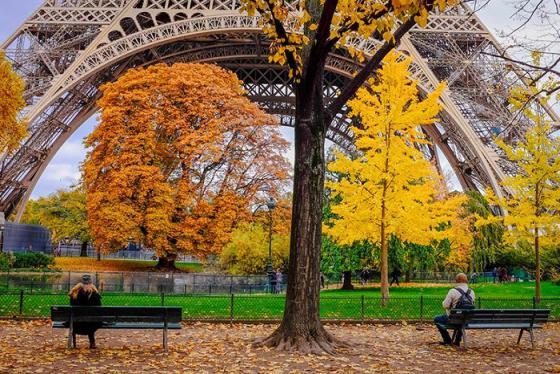 Hướng dẫn cách mua vé máy bay sang Pháp, thưởng thức mùa thu lãng mạn bậc nhất hành tinh